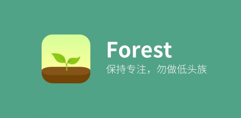 种颗树帮你摆脱手机,专注生活:Forest 评测