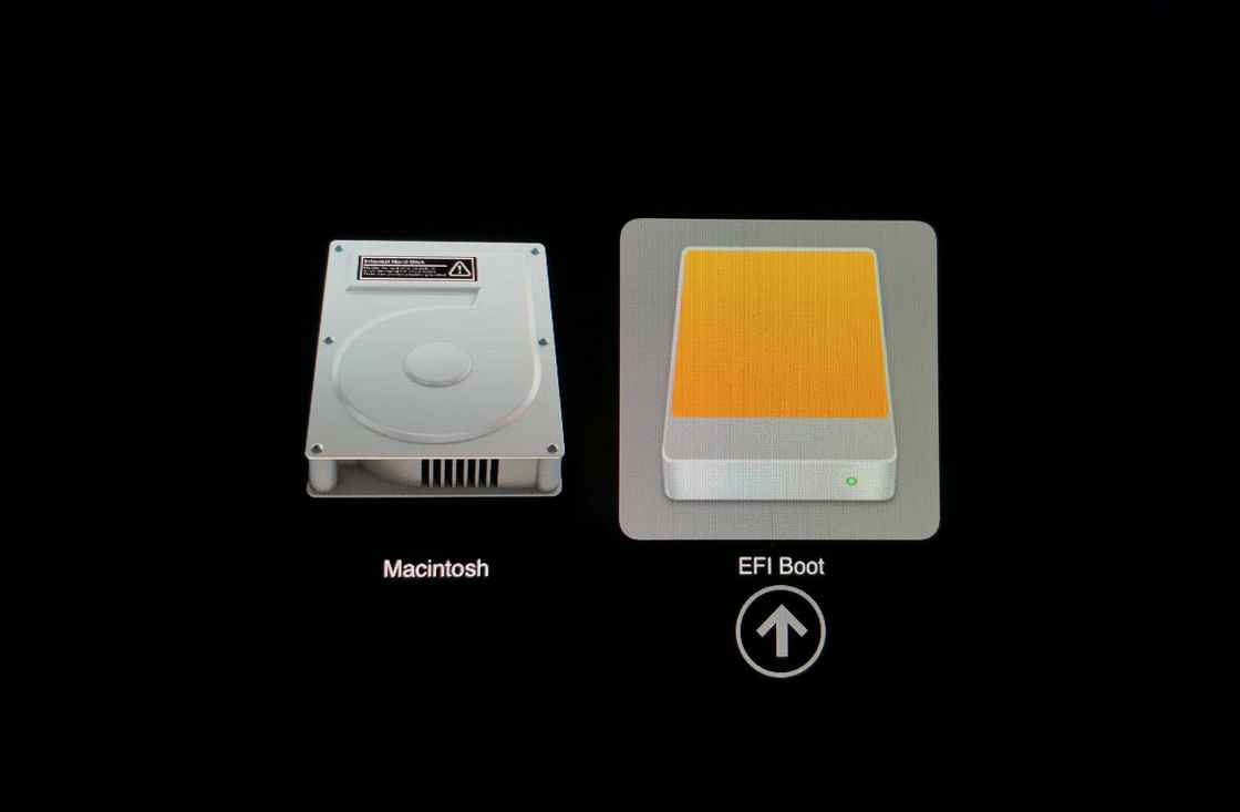 选择 EFI Boot 进入安装程序