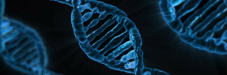 你的第一份 DNA 报告:基因检测服务「基因猫」体验