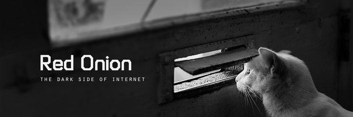 它能带你进入互联网的「黑暗面」:深网浏览器 Red Onion [限免]