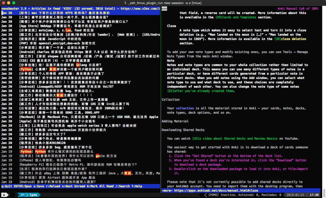 图 1:在终端下使用 newsbeuter 订阅 RSS 和使用 lynx 浏览网页