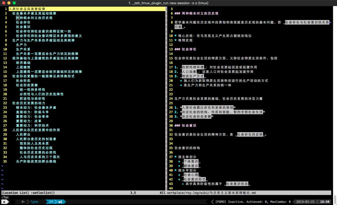 图 9:vim 编辑 markdown 文件时利用插件生成 TOC